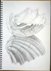 drawing_31.10.15_(29.7x42cm)