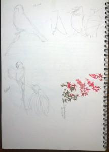 sketches 1_23.10.15_(29.7x42cm)