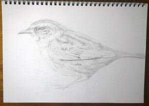 sketches 2_23.10.15_(42x29.7cm)