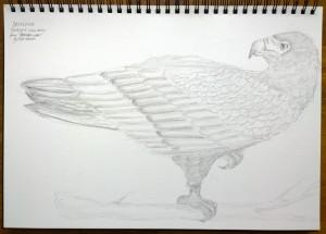 sketch_10.11.15_(42x29.7cm)