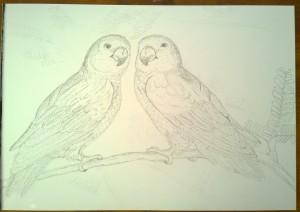 drawing_13.11.15_(42x29.7cm)