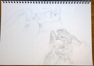 sketch 4_1.11.15_(42x29.7cm)