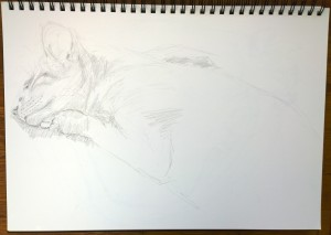 sketch 6_1.11.15_(42x29.7cm)