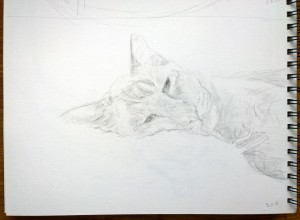 sketch_3.11.15_(29.7x21cm)