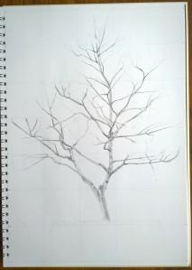 sketch_14.12.15_(28x40.5cm)