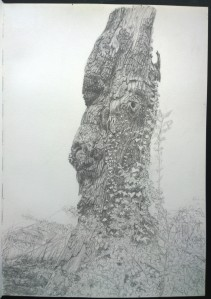 sketch_16.05.16_(29.4x42cm) In Kenwood