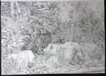 sketch..._02.08.16_(42x29.4cm)