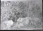 sketch..._10.08.16_(42x29.4cm)