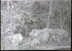 sketch..._17.08.16_(42x29.4cm)