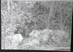sketch..._21.08.16_(42x29.4cm)