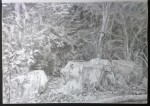 sketch..._22.08.16_(42x29.4cm)