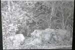 sketch..._23.08.16_(42x29.4cm)