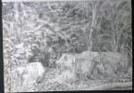 sketch..._24.08.16_(42x29.4cm)