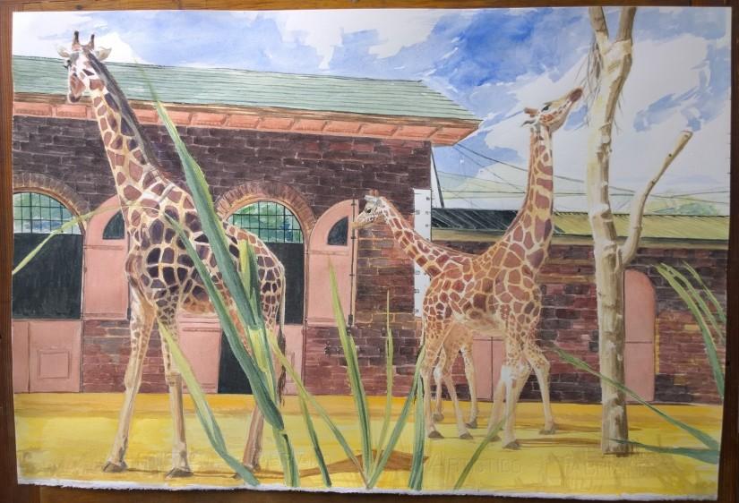 Giraffe Pushmi-pullmi