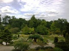 RHS Wisley - Rock Garden