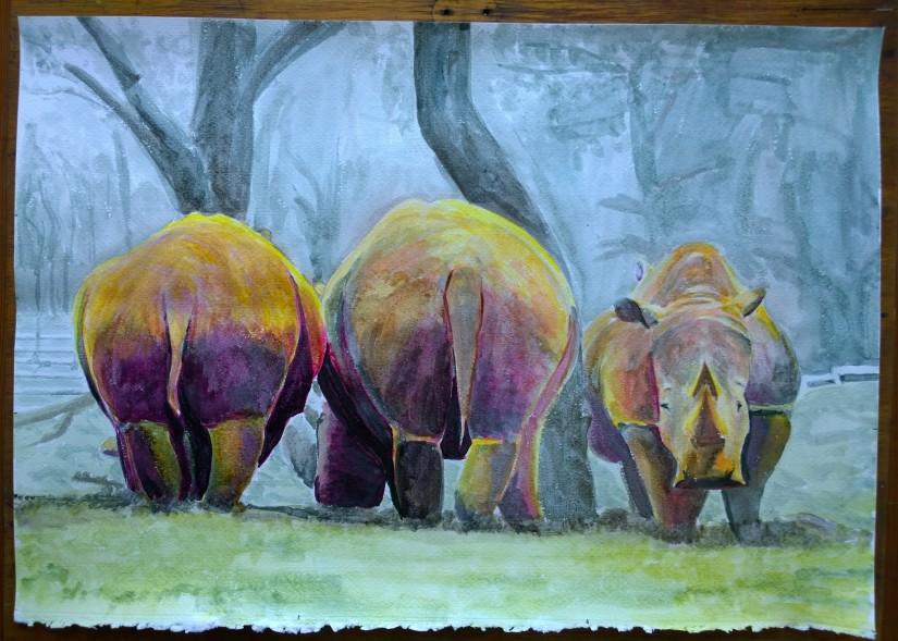 A Stubbornness ofRhinos