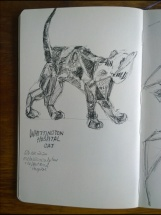 20200226 Whittington Cat